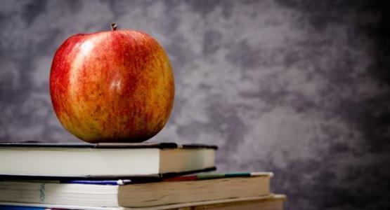 Apple- by jarmoluk at Pixabay.com