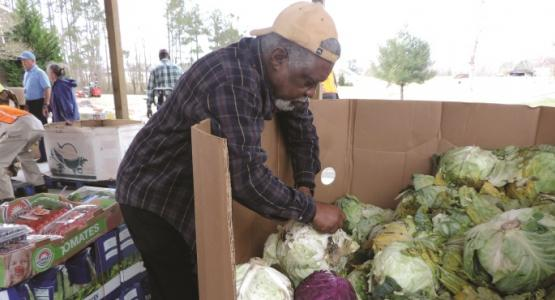 A volunteer picks out fresh produce for community members living in the Yale church area.